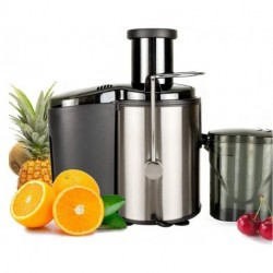 RASETSU Electric Juice Extractor, Easy Clean Juicer Machines with Wide Mouth, 800W Stainless Steel Centrifugal Juicer with Juice Container, Blender for Fruit Vegetable, Anti-drip, Black
