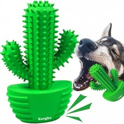 Kongbo Dog Chew Toys, Durable Rubber Dog Toys for Aggressive Chewers, Cactus Tough Toys for Training and Cleaning Teeth, Interactive Dog Toys for Small/Medium Dog