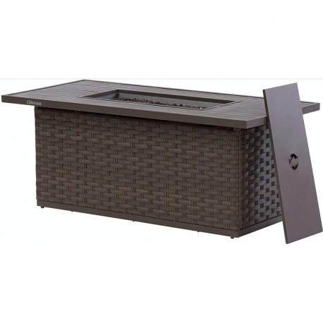 Olmia  Outdoor Wicker Patio Propane Gas Fire Pit